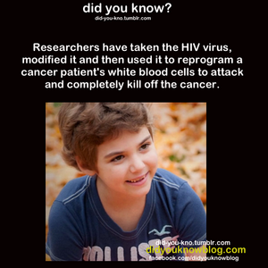 HIV Kills Cancer