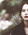 Hunger Games  - the-hunger-games photo