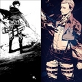 Levi and Erwin - shingeki-no-kyojin-attack-on-titan fan art