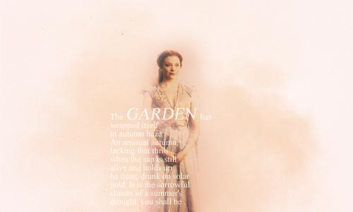 Margaery Tyrell Hintergrund called Margaery Tyrell