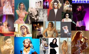 Marina Collage