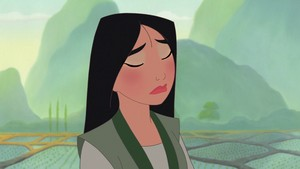 Mulan's solace look
