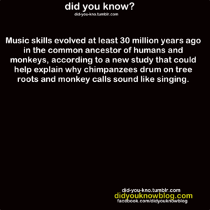 Musical Genetics