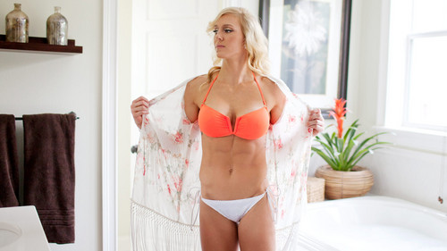 WWE Divas achtergrond probably with a bikini, a brassiere, and a lingerie entitled NXT Summer Vacation - charlotte