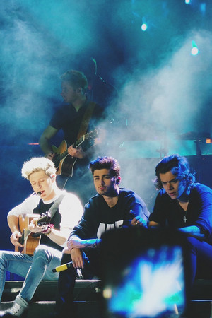 Niall,Zayn,Harry