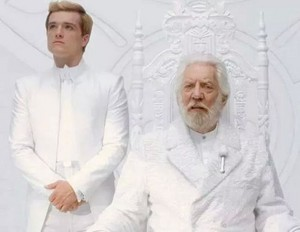 Official Mockingjay still