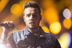 One Direction, Where We Are Tour Amsterdam (24.06.2014) - x