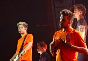 One Direction, Where We Are Tour Amsterdam (25.06.2014) - x