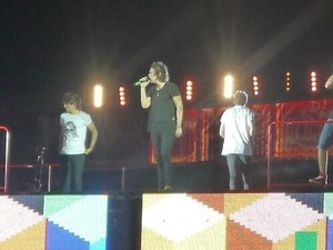 One Direction, Where We Are Tour Barcelona (08.07.2014) - x