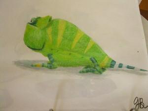 One of the Chameleons