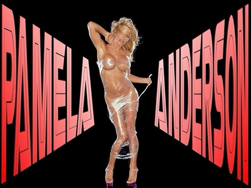 Pamela Anderson wallpaper probably with a street called Pamela Anderson