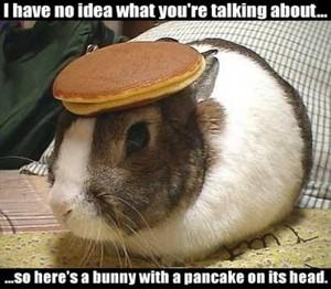 Pancake Bunny!
