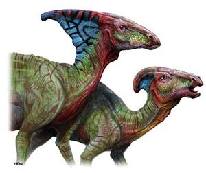 Parasaurolophus pair