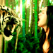 Roar - Katy Perry - katy-perry icon
