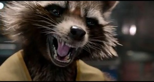 Guardians of the Galaxy 바탕화면 possibly with a common raccoon titled Rocket Raccoon