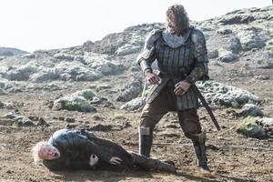 Sandor Clegane and Brienne of Tarth