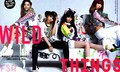 Scans of 2NE1 in Nylon USA - 2ne1 wallpaper