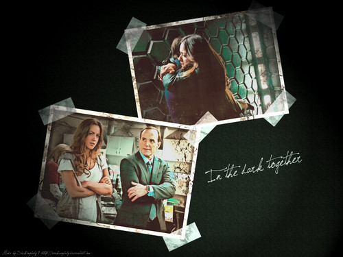 Coulson & Skye fond d'écran called Skye and Coulson ♥