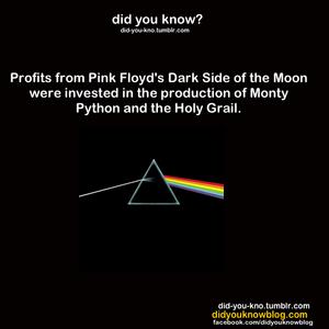 Thank розовый Floyd!