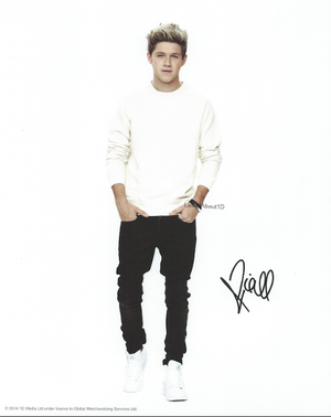 The boy's photoshoot for Where We Are Tour merchandise.
