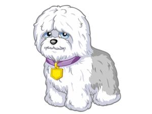 Toby the perrito, cachorro