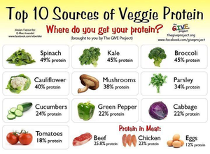 top, boven 10 Sources of Veggie Protein