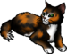Turtle tail my fav warriors cat in dawn of the clans <3 - warriors-novel-series icon