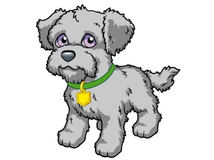 Wallace the perrito, cachorro