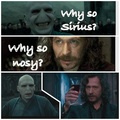 Why so Sirius? - harry-potter photo