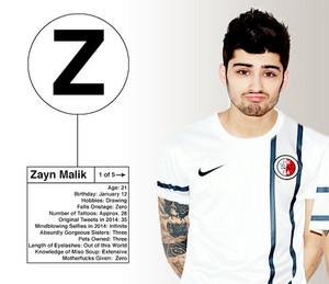 Zayn Info Card < 3