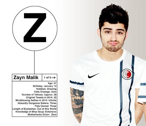 Zayn Malik images Zayn Info Card 3 wallpaper and background – Zayn Malik Birthday Card