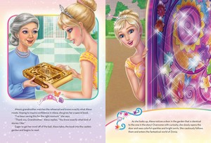 barbie sd the book
