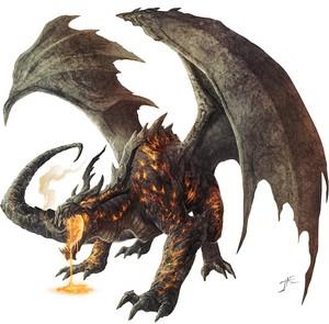 dragon333444