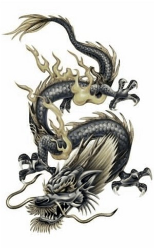 dragon342212