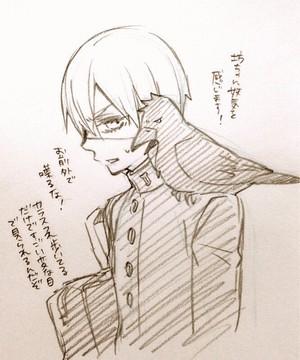 kuroshitsuji scribbles por toboso yana
