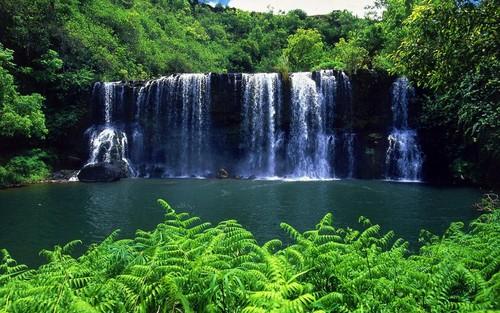 Ari & Rachel ♥ 壁纸 called Waterfalls
