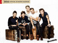 one direction official calendar 2015 - one-direction photo