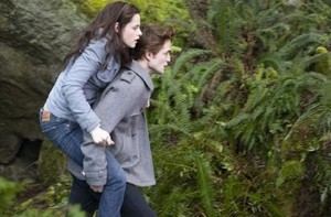 Bella about to see Edward in the sunlight