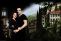 Bella  - twilight-couples wallpaper