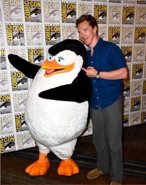 Benedict Cumberbatch and Skipper getting along