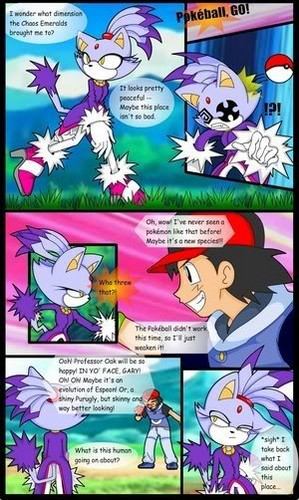 Blaze the Cat achtergrond with anime entitled Blaze the Cat in the Pokemon World