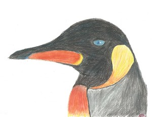 Bob the King pinguïn