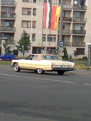 Caddy in Budapest