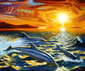 Cherokee Rose Lee Barney - dolphins photo