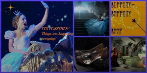 cinderella Tribute Collage