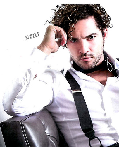 DAVID BISBAL PASSION GITANA wallpaper titled David Bisbal