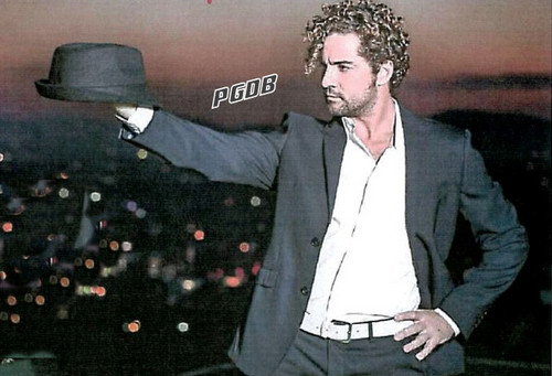 DAVID BISBAL PASSION GITANA wallpaper with a business suit, a suit, and a well dressed person entitled David Bisbal