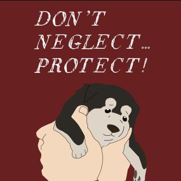 Don't Neglect... Protect!