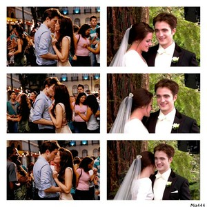 Edward and Bella's wedding and honeymoon