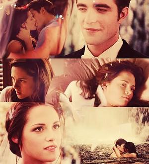 Edward and Bella's wedding and honeymoon
